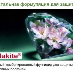 malakite-cover2