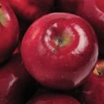 Creşte producţia mondială de mere