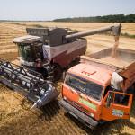 Rusia îşi suspendă exporturile de cereale până la 1 iulie