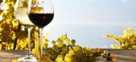 Pandemia de COVID-19 ar putea scădea cu 30%-50% exportul produselor vitivinicole autohtone