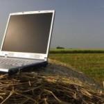 O companie din România investește 40 000 Euro într-o piață online pentru fermieri