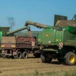 Statul va achita 70% din prima de asigurare a agricultorilor