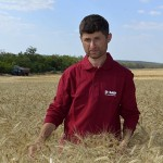 La Cahul s-a început recoltarea grâului de toamnă. Vezi ce rezultat au obținut agricultorii (reportaj foto)
