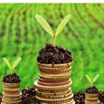 Program de finanțare de 660 milioane de lei, lansat de Ministerul Agriculturii