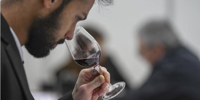 Vinurile moldovenești au obţinut 47 de medalii în Franţa