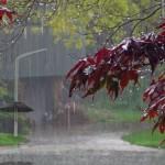 Prognoza meteo: când revin ploile?