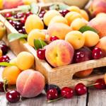 Federația Rusă rămâne și în 2020 piața de bază pentru exportul fructelor moldovenești