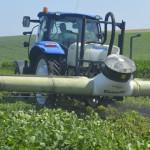 Guvernul propune reducerea TVA la cota de 12% pentru inputurile agricole