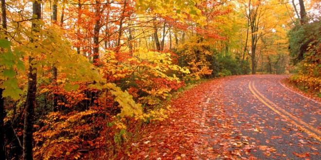 Condițiile agrometeorologice și rezervele de umiditate în sol în luna octombrie 2020