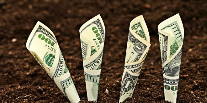 AIPA acordă subvenții în avans pentru îmbunătăţirea nivelului de trai şi de muncă în mediul rural