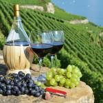 18523855 - wine on the terrace vineyard in lavaux region, switzerland