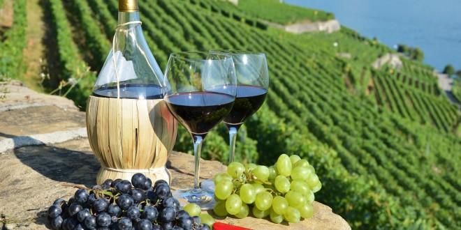 Italia, Spania și Franța – cei mai mari producători și exportatori de vin din UE