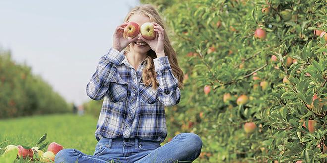 Rak 3+4 – Борьба с яблонной плодожоркой и листовертками