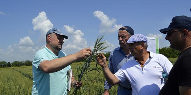 Seminar BASF dedicat culturilor de câmp. Reportaj foto