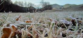 Meteorologii au emis cod galben de înghețuri pe toată țară